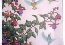 HummIngbird and Fuchsia