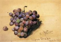 Topaz Grapes 1870