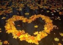 Осень… пора очей очарованье…