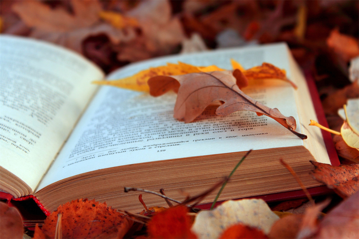 Осень11