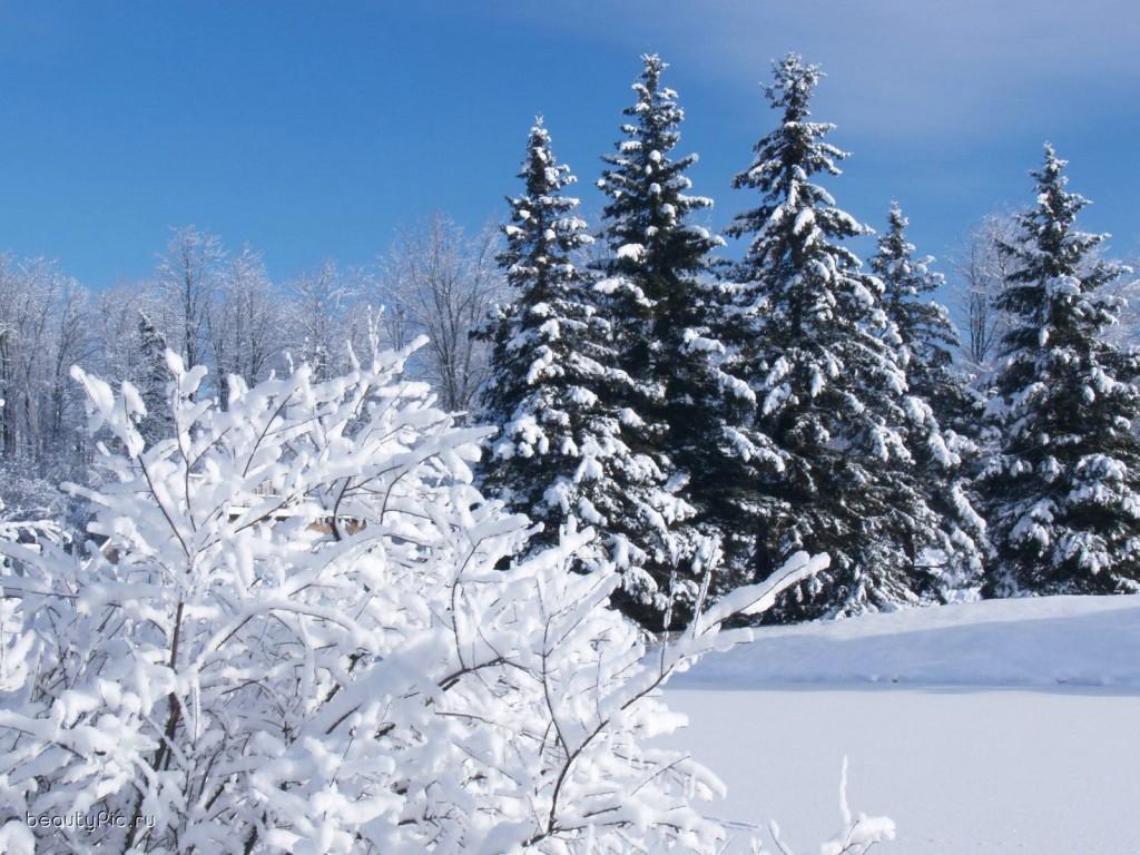 зима5