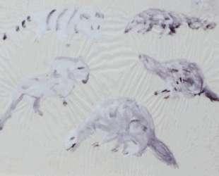 Animal Sketches — Марк Тоби