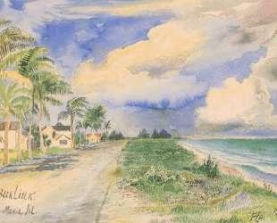 Остров Анны-Марии, Флорида — Давид Бурлюк