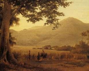 Antilian Landscape, St. Thomas — Камиль Писсарро