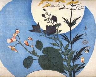 Autumn flowers in front of full moon — Хиросиге