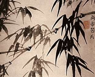 Bamboo — Шитао