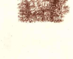 Birch copse — Леонардо да Винчи