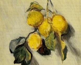 Ветка лимонов — Клод Моне