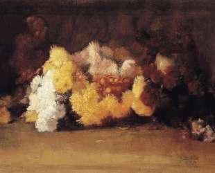 Chrysanthemums — Ги Роуз