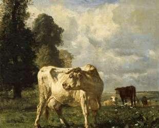 Cows in the Field — Констан Труайон