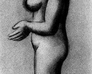 Female nude in profile — Пабло Пикассо