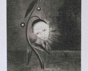 Flower of the swamp, a head human and sad — Одилон Редон