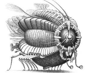 Fly Alarmowka — Яцек Йерка