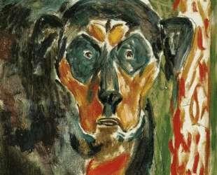 Голова собаки — Эдвард Мунк