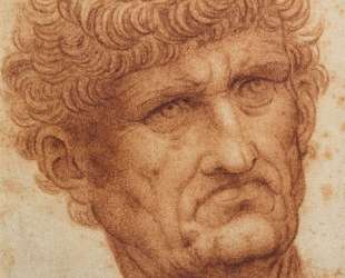 Head of a Man — Леонардо да Винчи
