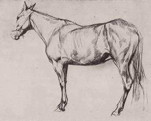 Лошадь — Валентин Серов