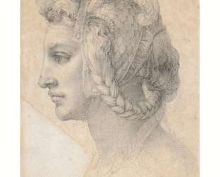 Ideal head of a woman — Микеланджело