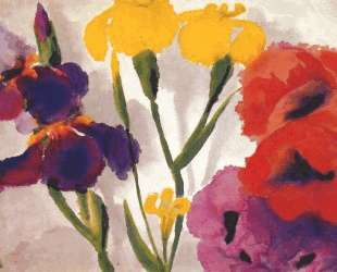 Irises and poppies — Эмиль Нольде