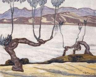 Landscape of Aswan on the Nile — Константин Малеас