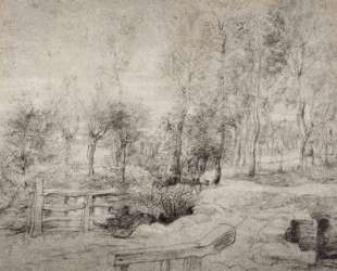 Landscape with a trees — Питер Пауль Рубенс