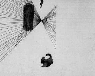 Leda and the Swan — Ласло Мохой-Надь
