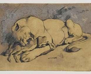 Львица, пожирающая кролика — Эжен Делакруа