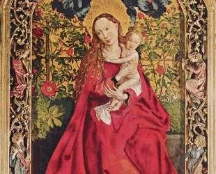 Madonna of the Rose Bower — Мартин Шонгауэр