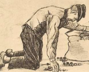 Man Putting Potatoes in a Sack — Винсент Ван Гог