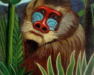 Mandrill in the Jungle — Анри Руссо