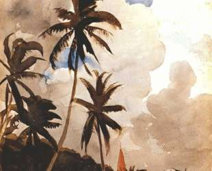 Palm trees (Bahamas) — Уинслоу Хомер