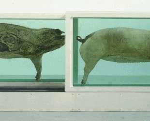Свинка — Дэмьен Хёрст