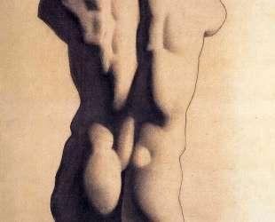 Plaster male torso — Пабло Пикассо