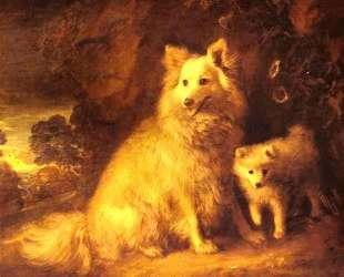 Pomeranian Bitch and Pup — Томас Гейнсборо