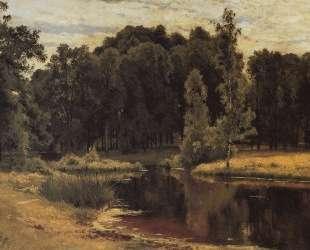 Пруд в старом парке — Иван Шишкин