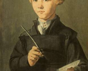 Portrait of a young scholar — Мартен ван Хемскерк