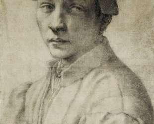 Portrait of Andrea Quaratesi — Микеланджело