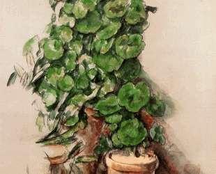 Pots of Geraniums — Поль Сезанн