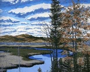 Shadow on Brigg's Meadow — Нил Уэлливер
