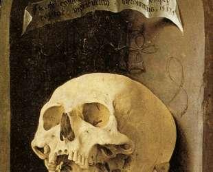 Skull — Мабюз