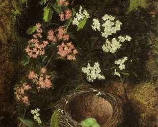 Still Life of Birds Nest with Primulas and Blossom — Джон Эткинсон Гримшоу