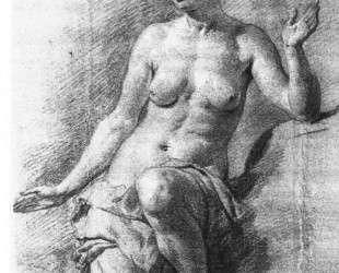 Study of a Female Nude — Адриан ван де Вельде