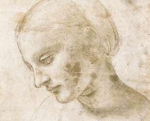 Study of a woman's head — Леонардо да Винчи