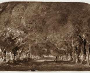 The avenue of chestnut trees — Теодор Руссо