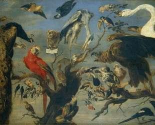 The Bird's Concert — Франс Снейдерс