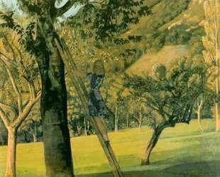 The Cherry Tree — Бальтюс