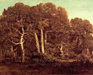 The Great Oaks of Old Bas-Breau — Теодор Руссо