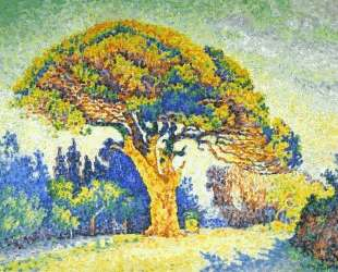 The Pine Tree at St. Tropez — Поль Синьяк