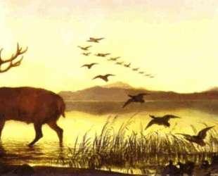 The Sanctuary — Эдвин Генри Ландсир