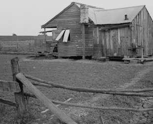Trapper's house — Бен Шан