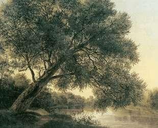 Tree by the brook — Фердинанд Георг Вальдмюллер